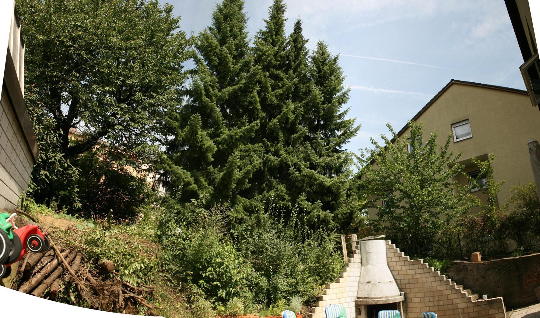 Garten1307